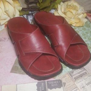 Cole Hann Leather Shoes